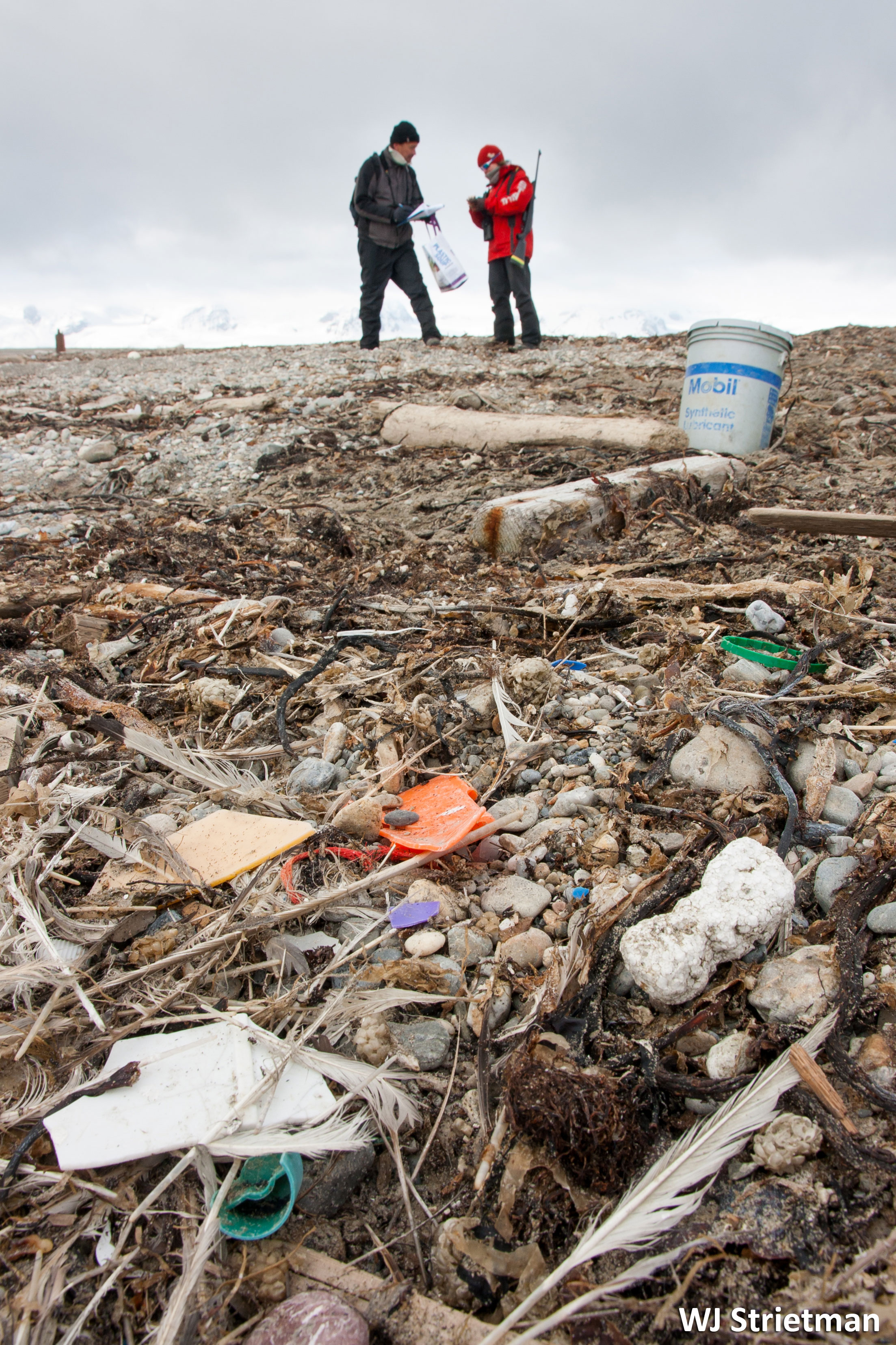 Beach Litter in Svalbard Photo credit WJ Strietman